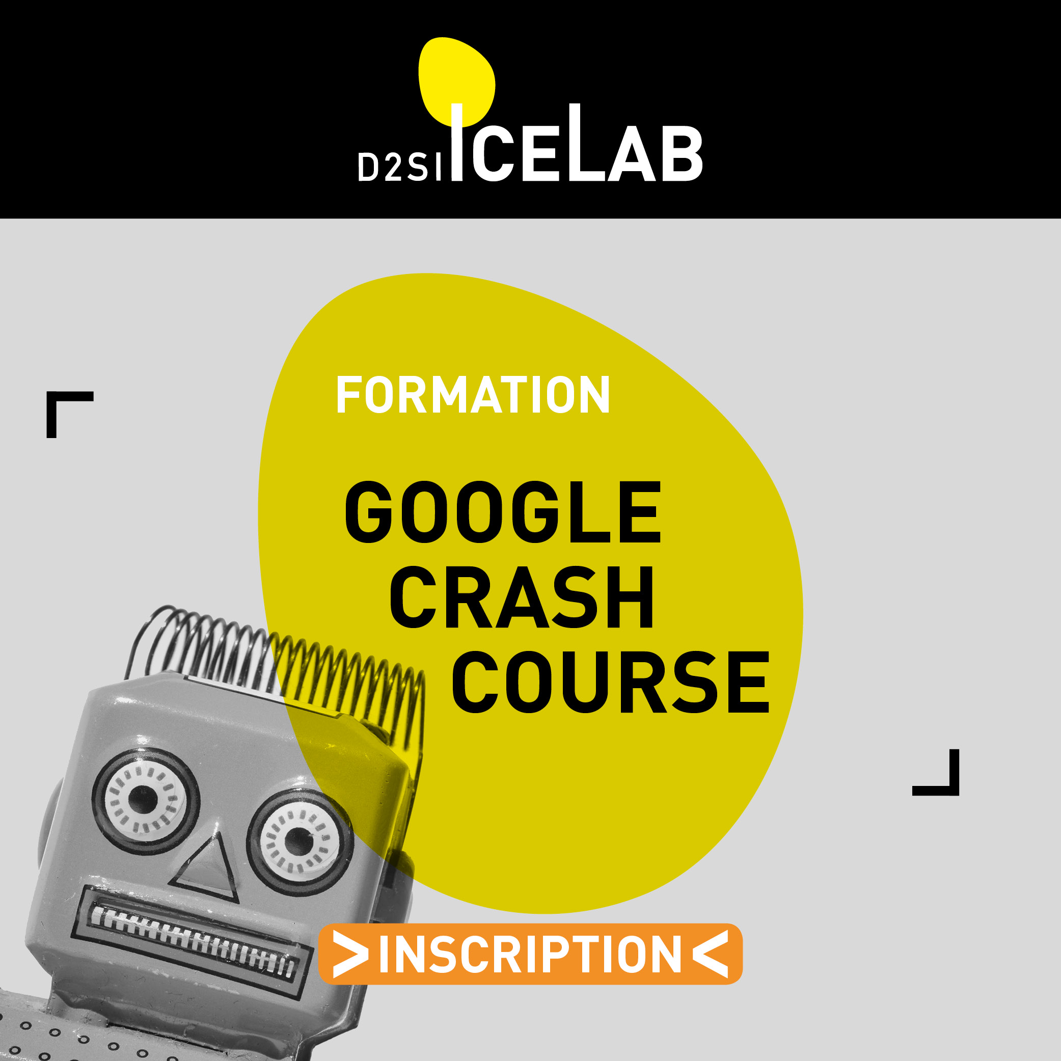 Google crash course ICELAB